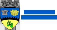 Primaria Orasului Topoloveni - Judet Arges